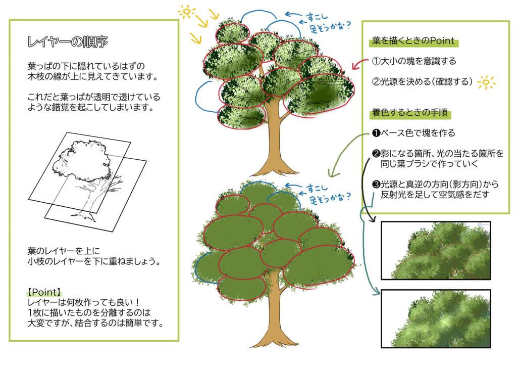 京都校生徒様の木の作画添削事例