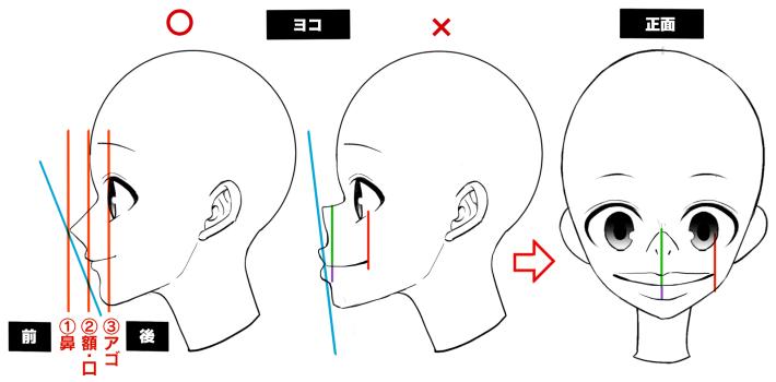鼻・口・顎のEラインのバランス