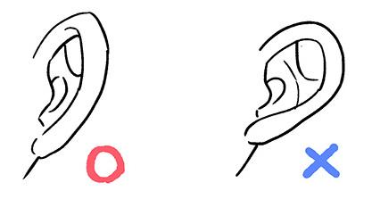 耳を描く時の注意点