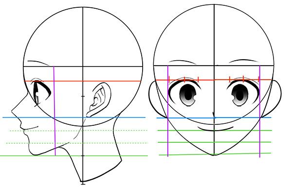 横顔の作画の上達法