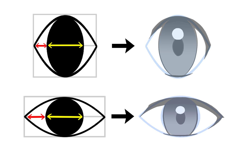 黒目と白目のバランス