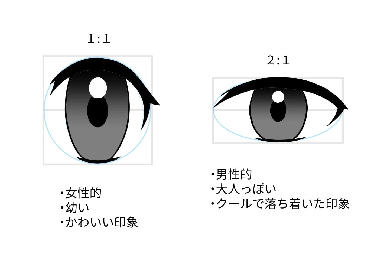 目の比率とそれぞれの印象の違い