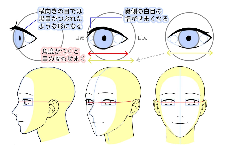 角度別の目の形と配置のポイント