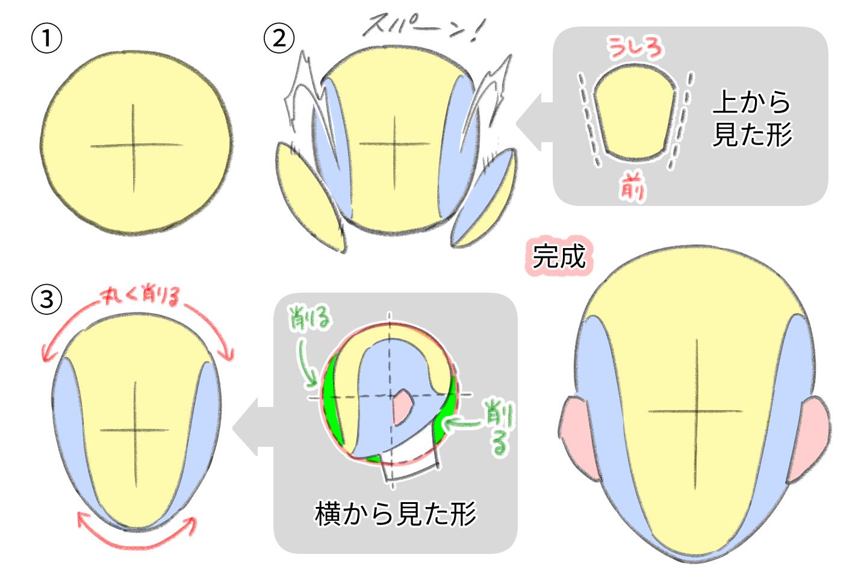 頭の立体図