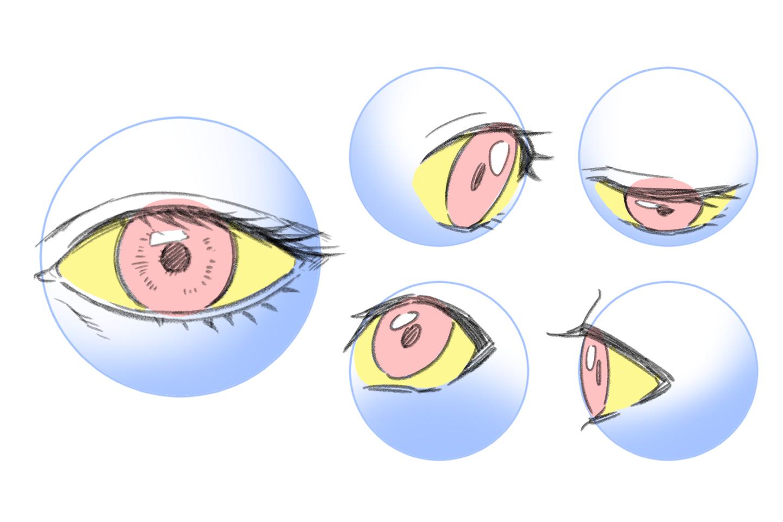 目を様々な角度からみたイラスト