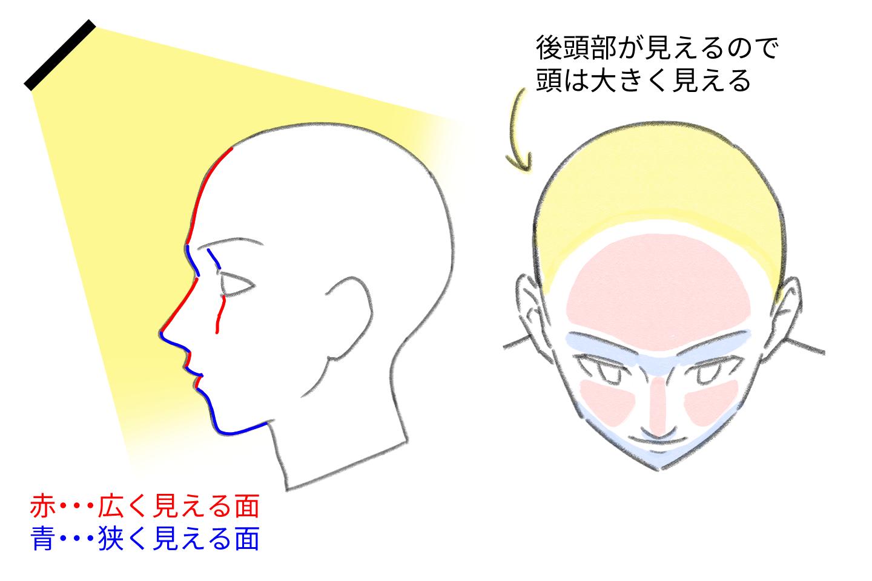 フカンの場合の顔の形