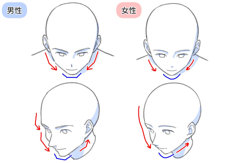 男女別のフカン顔を描くときのコツ