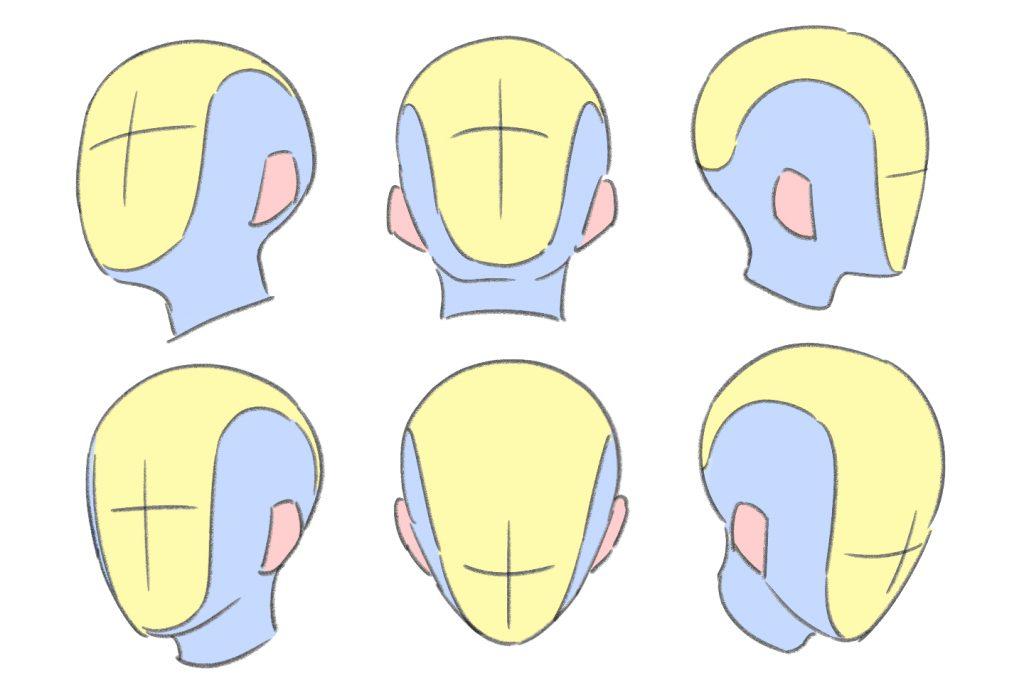 頭を様々な角度からみてみたイラスト