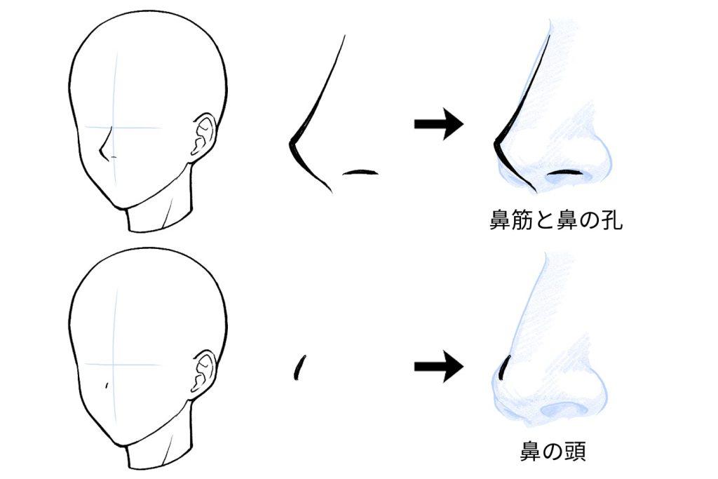 簡略化した鼻のイラスト