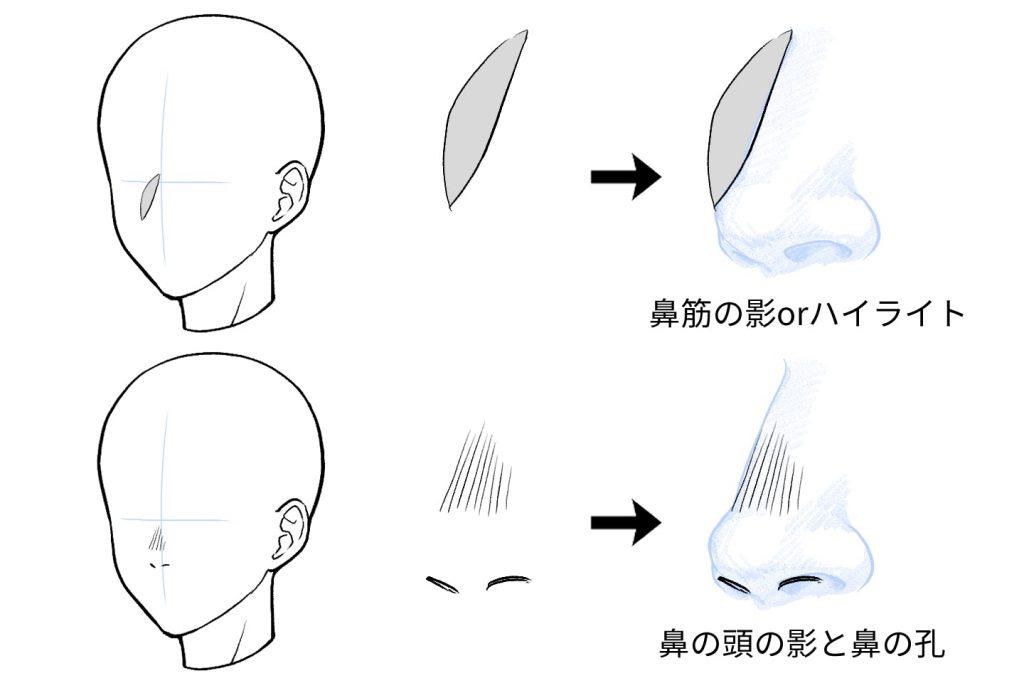 立体を活用した鼻の描き方解説イラスト
