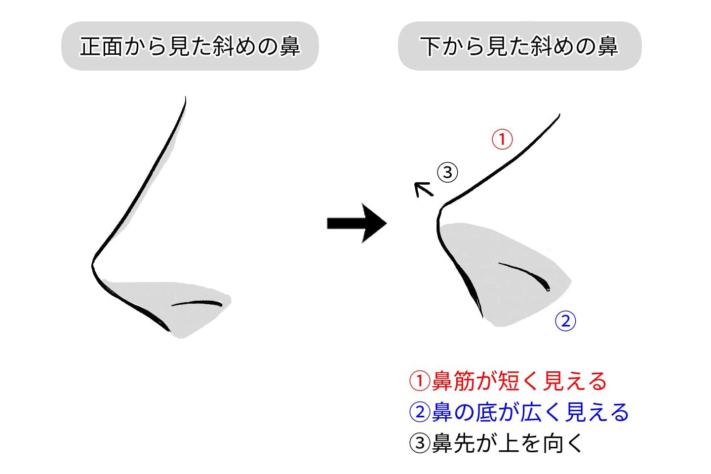アオリの鼻は鼻底がポイント図解