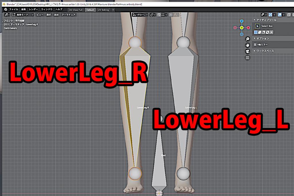 名前をLowerLeg_LとLowerLeg_Rにします